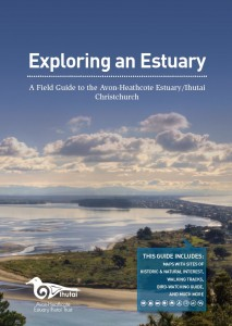Estuary Field Guide